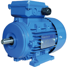 AEEH-ALB3-Induction-Electric-Motor