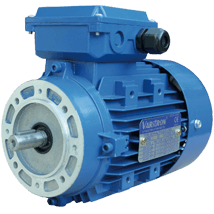 AEVH-ALB14-Induction-Electric-Motor