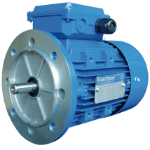 AEVH-ALB5-Induction-Electric-Motor